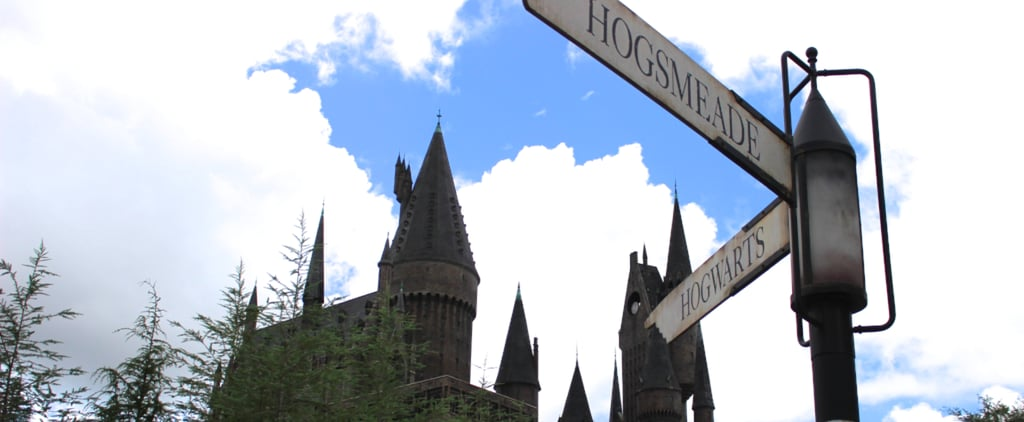 Harry Potter World Secrets