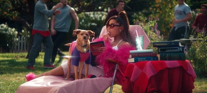 her real dog toulouse ariana grande thank u next music video easter eggs popsugar. Black Bedroom Furniture Sets. Home Design Ideas