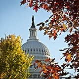 Beautiful Fall covers surrounded the US Capitol building in Washington DC.
