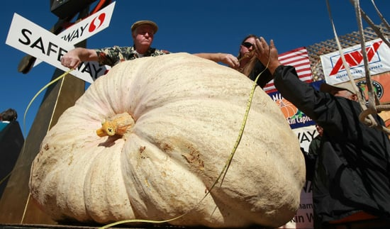 National Food Festivals and Food Events, Oct. 13-20, 2009