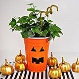 Plastic Cup Pumpkin Planter