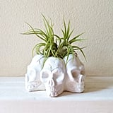Why settle on just one skull when you can have six on the same cool plant holder ($18)?