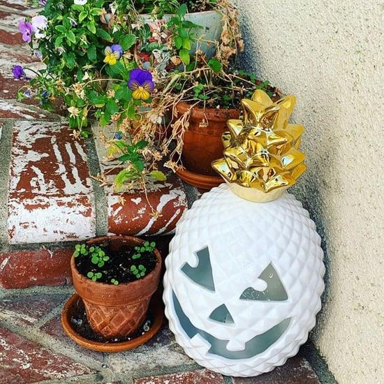 HomeGoods Halloween Pineapple Jack-o'-Lanterns