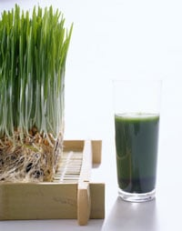 You Asked: What Does Wheatgrass Do For Me