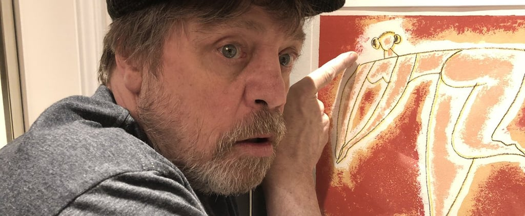 Mark Hamill Finds Princess Leia Painting in His Hotel Room