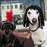 Big Dog Parade - Santa Barbara, CA
