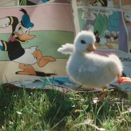 Disneyland Paris Little Duckling Commercial