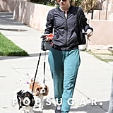 On Monday, Julianne Hough took her dogs out for a walk in LA.