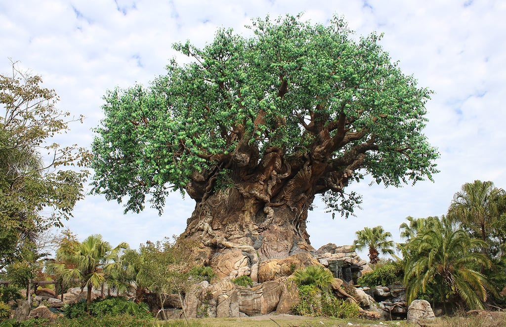 Animal Kingdom is built in a bowl.