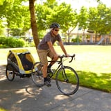 7 Carriers to Make Bike Riding With Tiny Ones Fun For the Whole Family