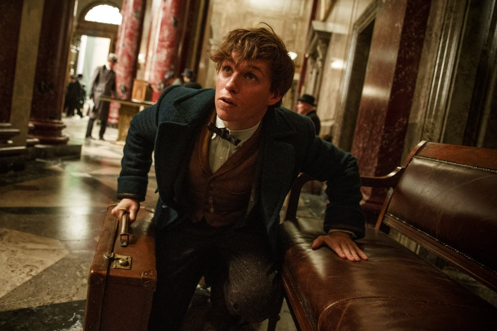 9 Basic Things to Know About Fantastic Beasts and Where to Find Them