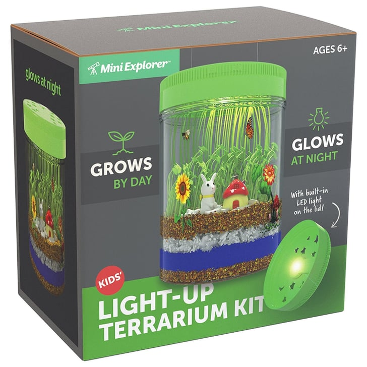 mini explorer light up terrarium kit on amazon popsugar moms. Black Bedroom Furniture Sets. Home Design Ideas