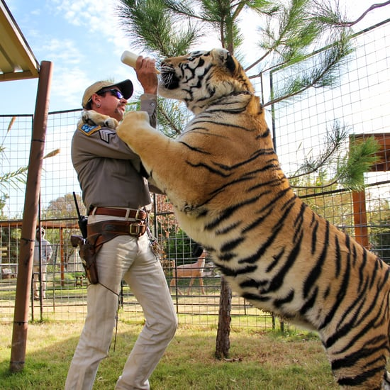 Tiger King: Did Joe Exotic Set the Fire at GW Zoo?