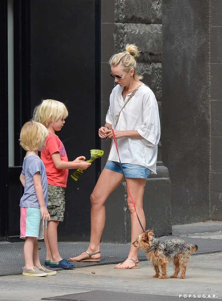 Naomi Watts took her sons, Sasha and Kai Schreiber, to walk the dog in NYC on Monday.