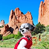 Then I went to visit the famous The Garden of the Gods and it was really magical with fierce views! Perfect for a model like me!