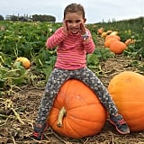 Ivanka Trump got into the Halloween spirit by taking Arabella to the pumpkin patch.
