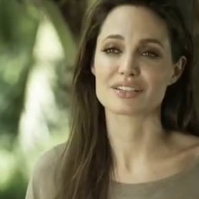 Full Video of Angelina Jolie's Louis Vuitton Journey Talking About Maddox and Pax Eating Crickets