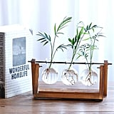 Desktop Glass Planter Vase