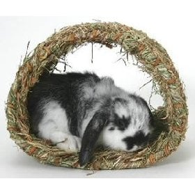 Hide-A-Way Hut For Bunny Playtime