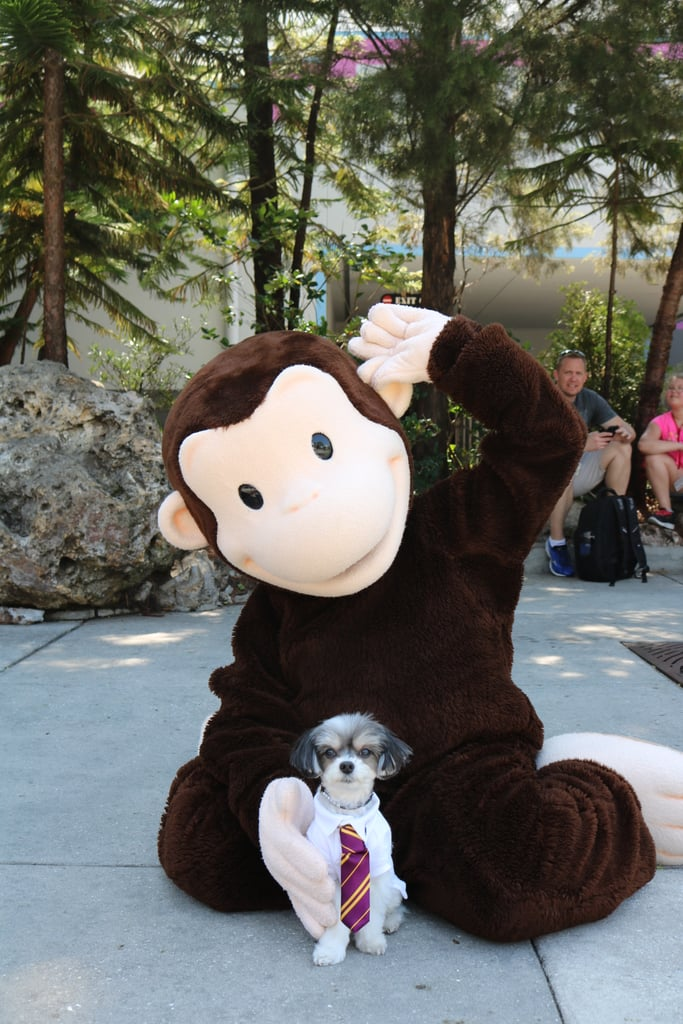 I then met Curious George!