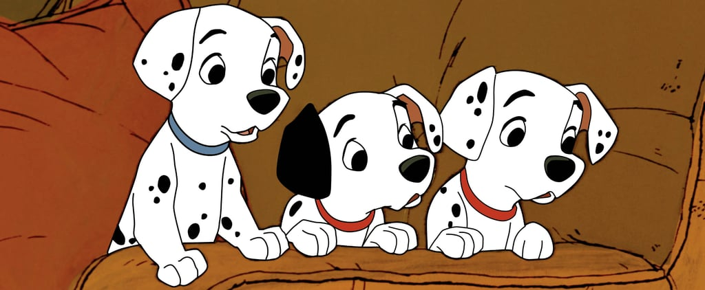 The Best Disney Names For Girl and Boy Dogs in 2020