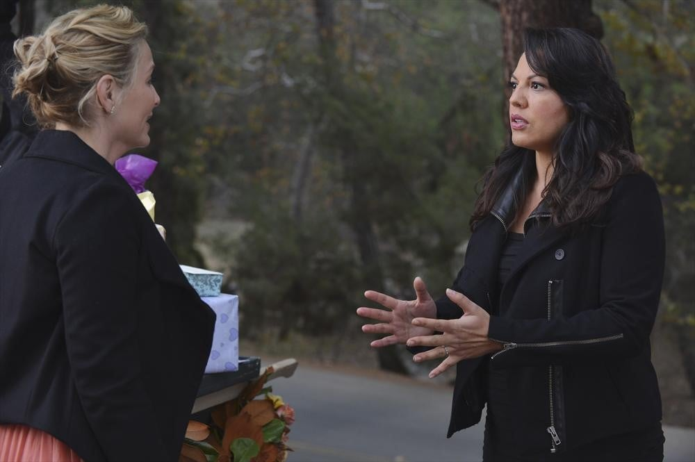 Callie and Arizona: Buying a House