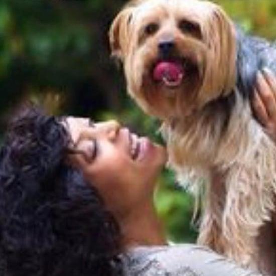Taraji P. Henson's Dog Dies