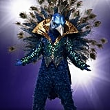Who Is the Peacock on The Masked Singer?