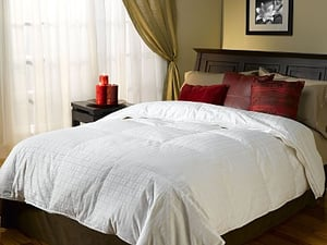Steal of the Day:  Serta Down Comforter