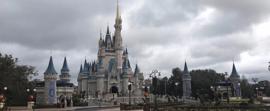 Disney World Reopens After Hurricane Irma