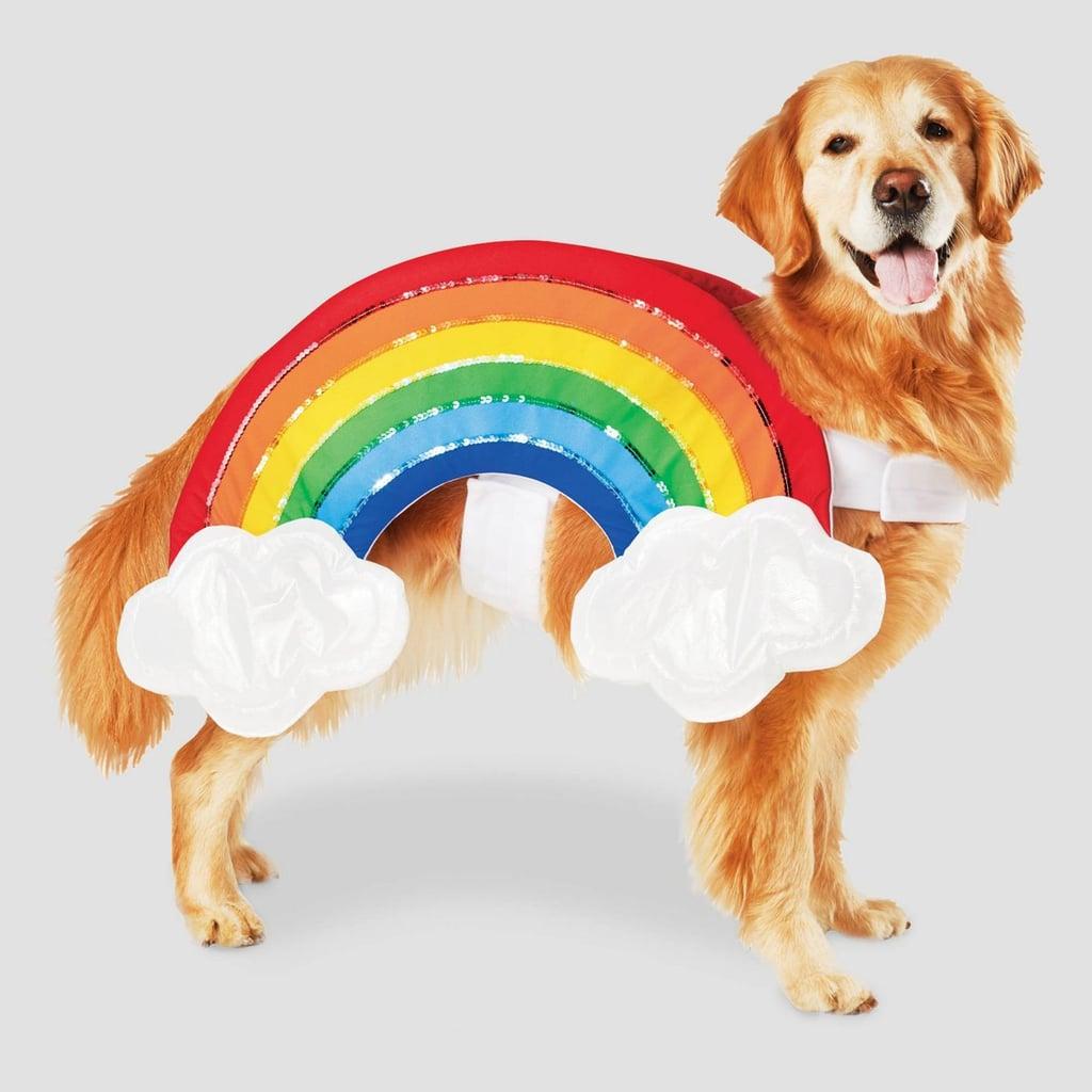 Rainbow with Clouds Halloween Dog Costume
