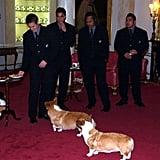 حول القصر، عام 2002