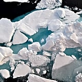 The Arctic Ocean is the world's smallest ocean.