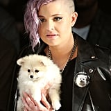 Kelly Osbourne (and her dog Polly) at Francesca Liberatore Spring 2016