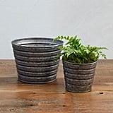 Little Stripes Pot