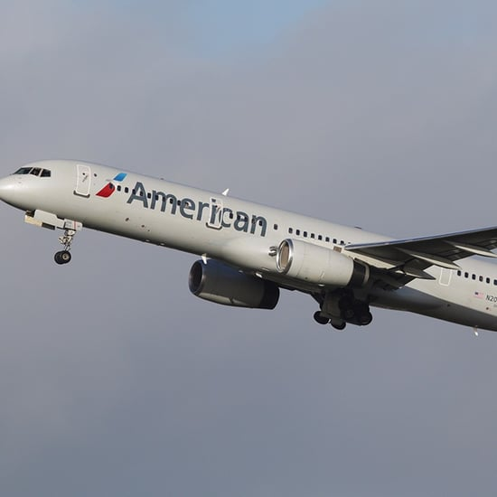American Airlines Moves Black Passenger to Back of Plane