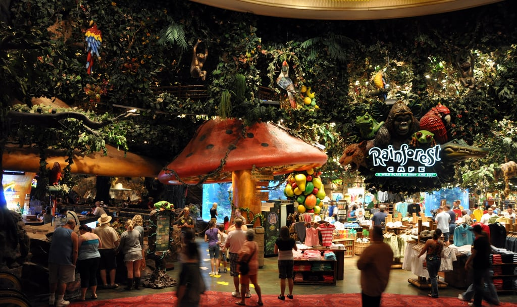 Rainforest Cafe At Mgm Las Vegas Attractions For Kids