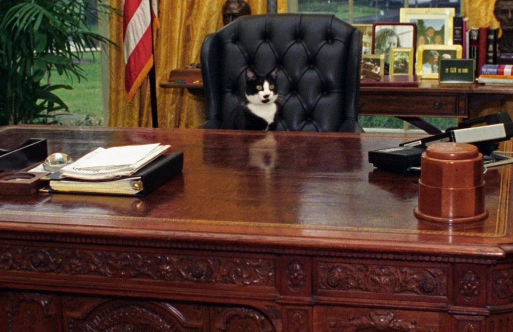 If My Pet Ran For President Hashtag