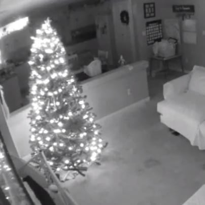Video | Elf on the Shelf Caught on Security Camera