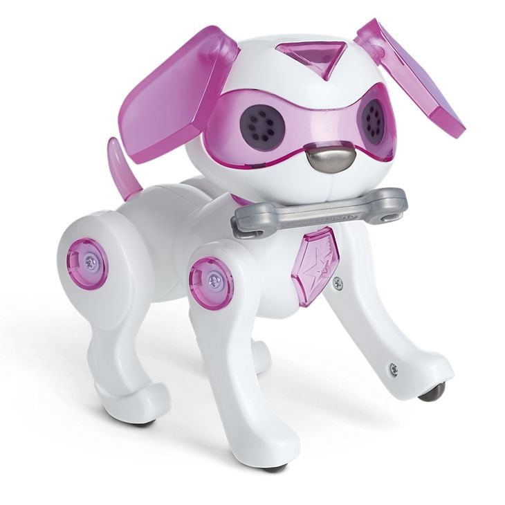 Luciana's Robotic Dog
