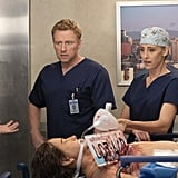 And so are Owen, Teddy, and Amelia.