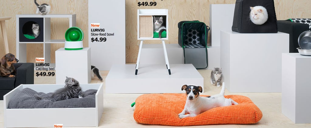 IKEA Launched a Pet Collection and People Can't Get Enough of It