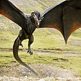 One of Daenerys's dragons.