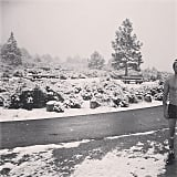 A Shirtless Moment in the Snow