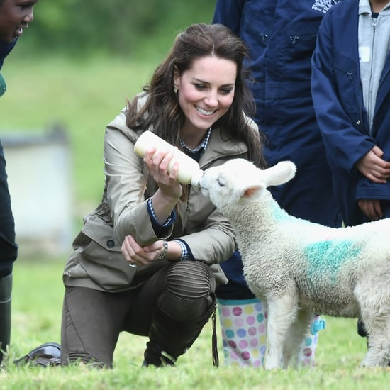 Duchess of Cambridge Feeding a Lamb Pictures May 2017