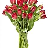 Blooms2Door Red Tulips