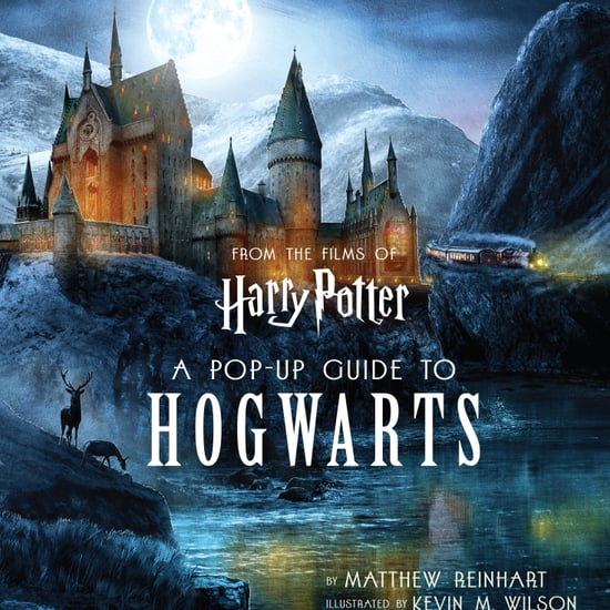 Harry Potter Insight Editions Books on Amazon