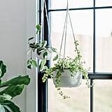 Simplicity Ceramic Hanging Planter