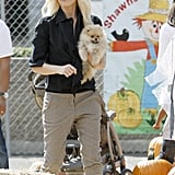 Gwen Stefani carried her puppy at Shawn's Pumpkin Patch in Culver City.
