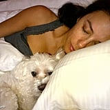 Eva Longoria took a nap with her furry bed buddy. Source: Eva Longoria on WhoSay